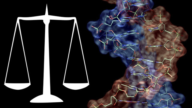 using dna in criminal trials essay Criminal justice process author: (dna typing, physical evidence objective 3—track the use and attrition of forensic evidence in the criminal justice.