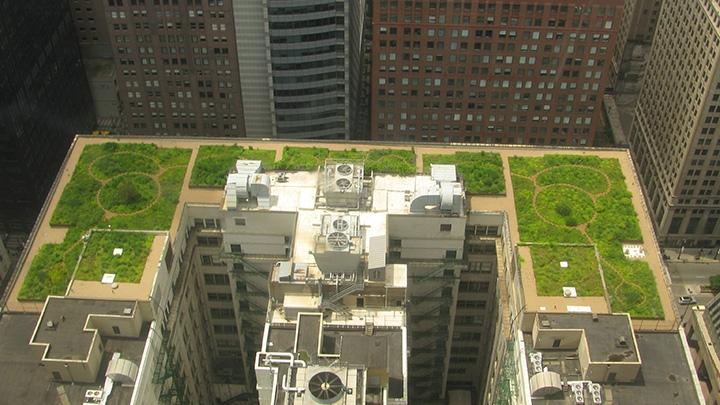 Chicago City Hall Building