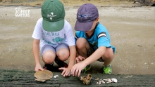 fossil hunting