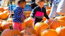 RVA Halloween Fun For Kids
