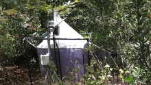 BioSCAN trap site
