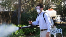 Pesticide fogging